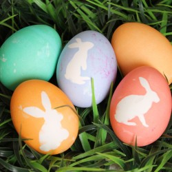 Bunny Silhouette Dyed Easter Eggs from createcraftlove.com #easter #eastereggs