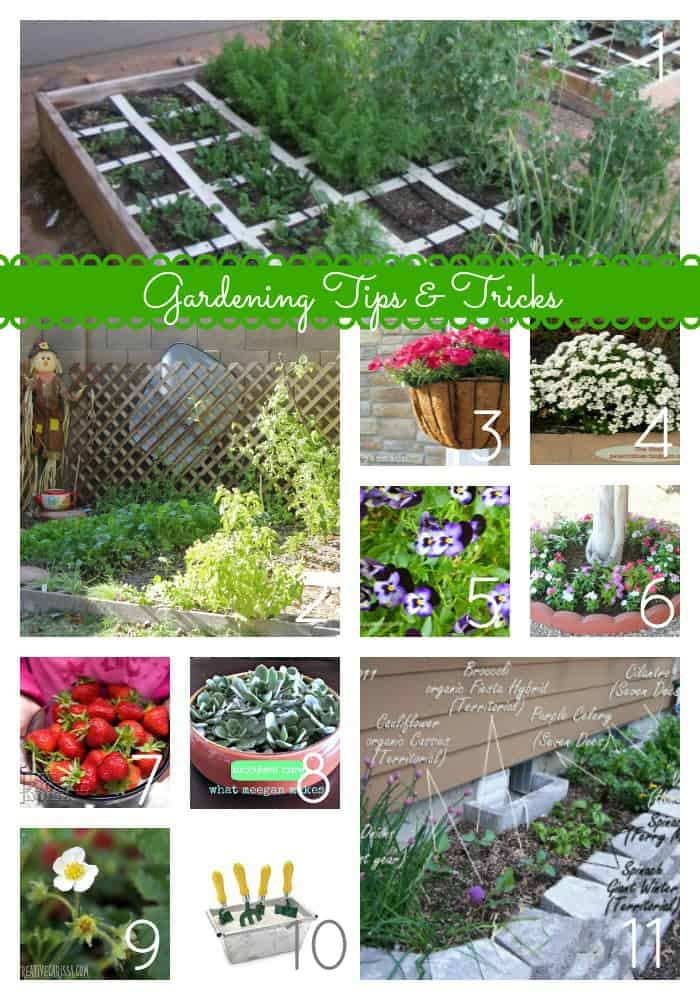36 Tips and Ideas to Make Your Garden Grow via createcraftlove.com #gardening #gardeningDIY #gardeningcrafts