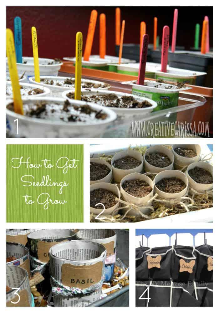 36 Tips and Ideas to Make Your Garden Grow via createcraftlove.com #gardening #gardeningDIY #gardeningcrafts