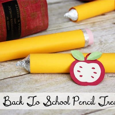 13 Home and Back To School Projects