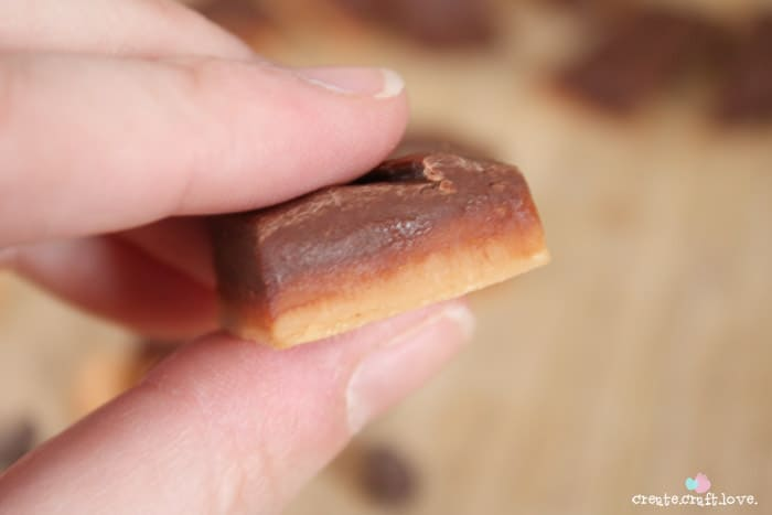 If you are still in search of a quick and easy baked goods recipe, try this No Fuss Double Decker Fudge! It takes less than five minutes to prepare! #recipes #nobake #fudge