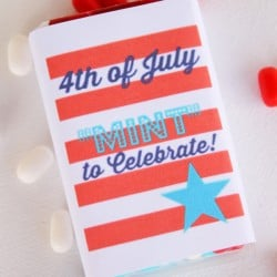 "4th of July Printables - ""Mint"" to Celebrate via createcraftlove.com"