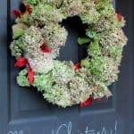 Hydrangea-Christmas-Wreath-Front-Door