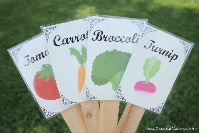 It is a photo of Obsessed Printable Plant Labels