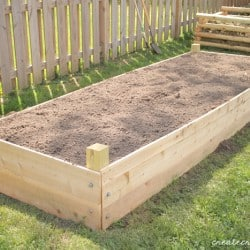 raised garden horizontal