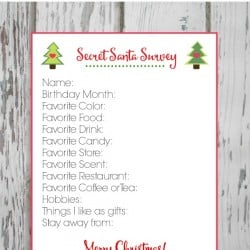 My Secret Santa Survey Printable will make gift exchanges a breeze this holiday season! via createcraftlove.com