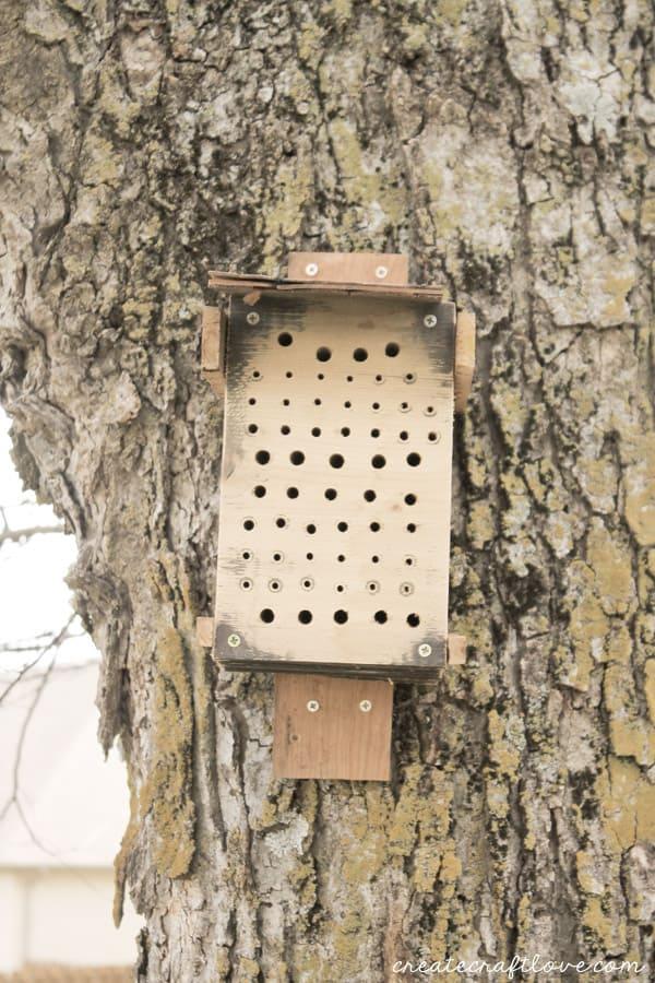 diy bee habitat create craft love