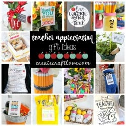 teacher appreciation gift ideas facebook