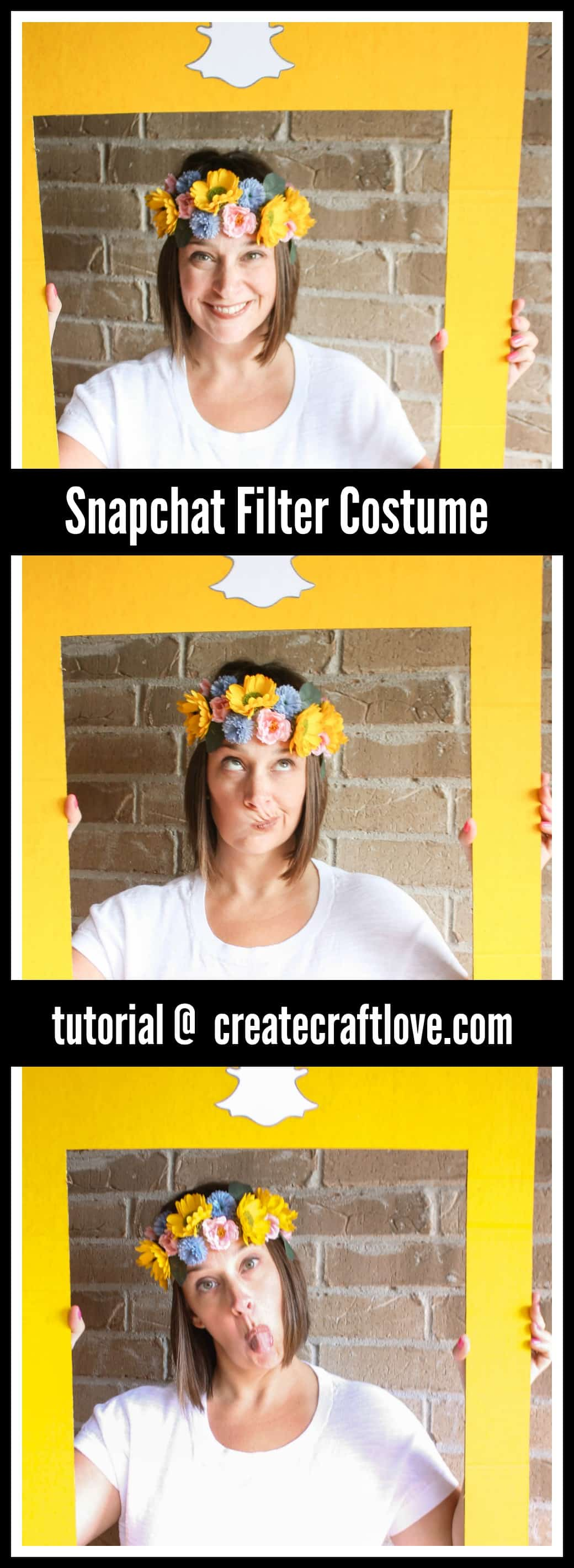 This Snapchat Filter Halloween Costume is a an EASY DIY idea for the upcoming festivities!