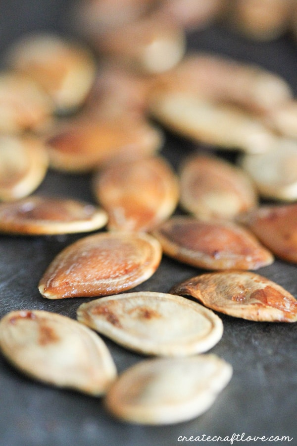 roasted-pumpkin-seeds-upclose-1-of-1