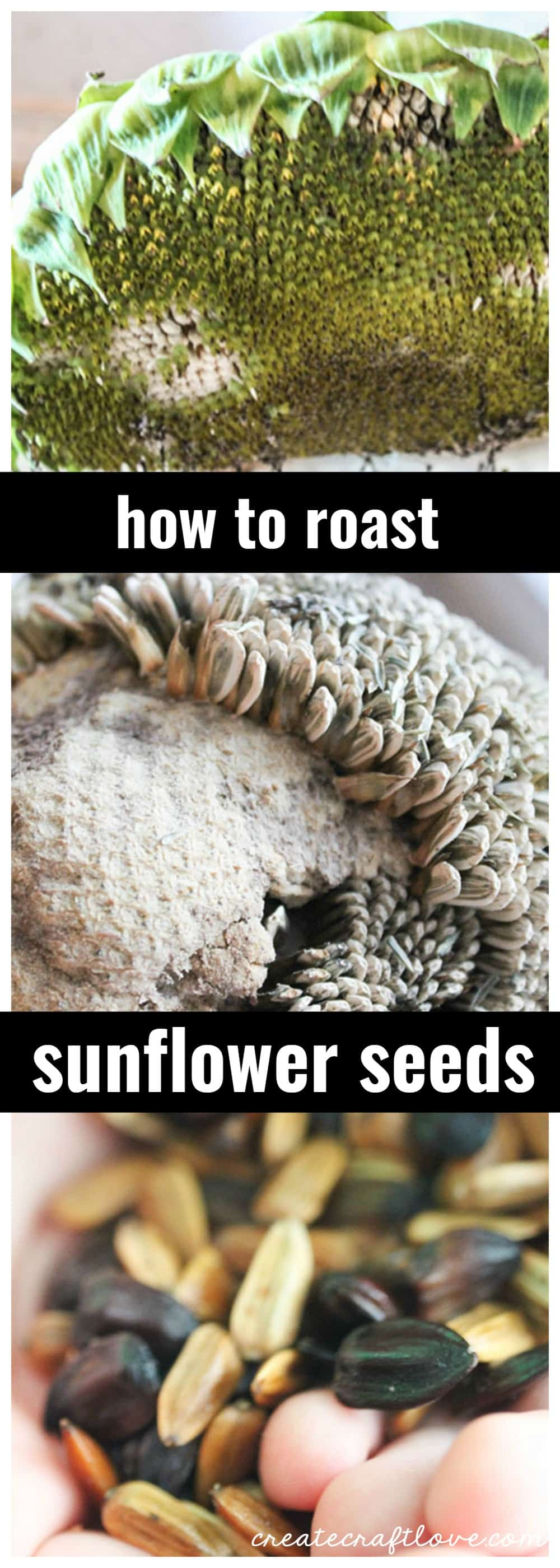 Sunflower seeds are one of my favorite salty snacks and watching October baseball with a batch of home roasted sunflower seeds just feels right.