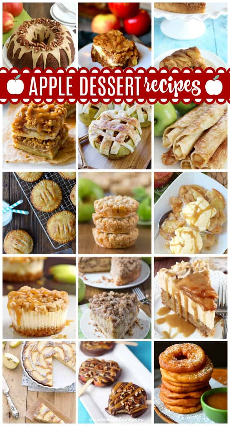 Cinnamon, caramel and sugar, oh my! These apple dessert recipes are great for fall!