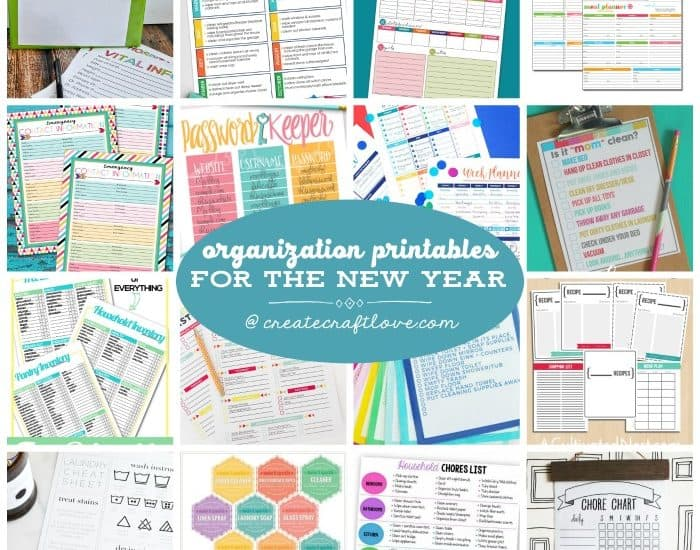 Begin the year on the right foot with these Organization Printables for the New Year!