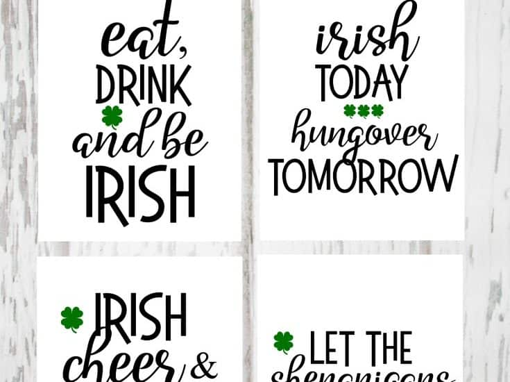Decorate for St. Patrick's Day with these Irish Drinking Printables! #printables #stpatricksday
