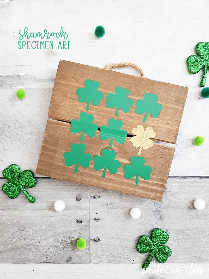 Add a little luck of the Irish to your St. Patrick's Day decor with our Shamrock Specimen Art! #cricut #specimenart #shamrock #stpatricksday